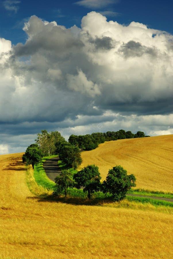 Download Summer landscape stock image. Image of cloud, background - 10550789