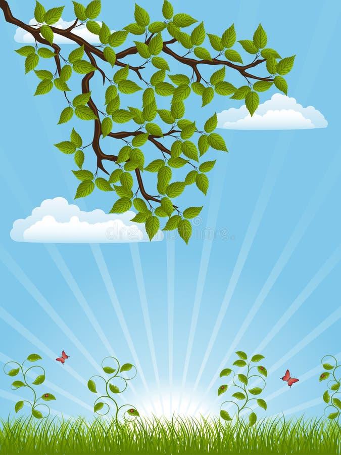 Download Summer landscape stock vector. Image of light, moth, leaf - 17142682