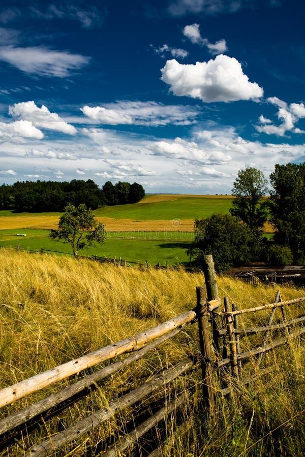 Summer landscape 2 royalty free stock photos