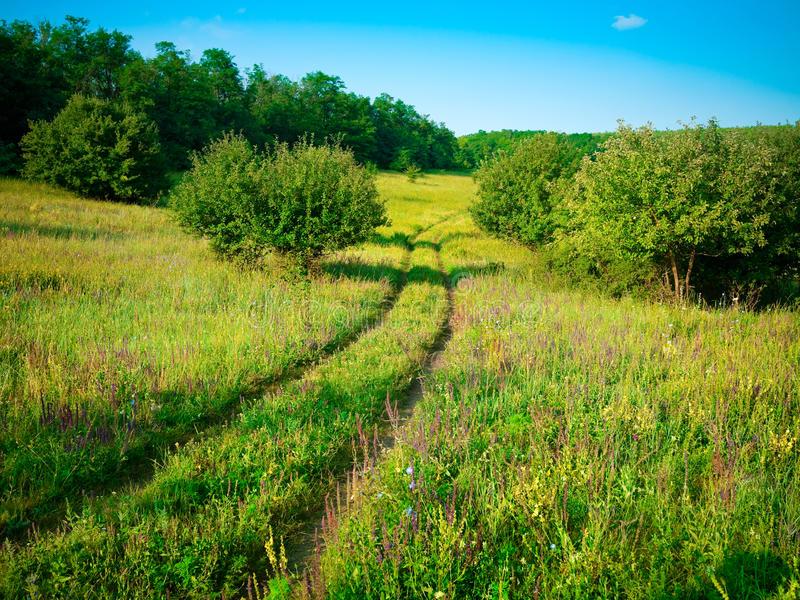 Download Summer Landscape Royalty Free Stock Photo - Image: 26542395