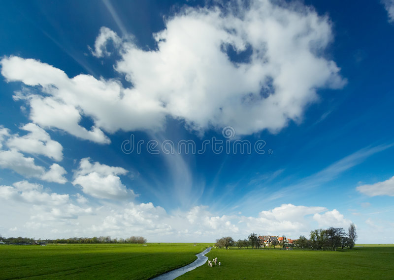Summer Landscape. A Summer landscape in Holland royalty free stock photo