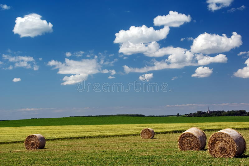 Download Summer Landscape stock photo. Image of nobody, rural, climate - 9859456