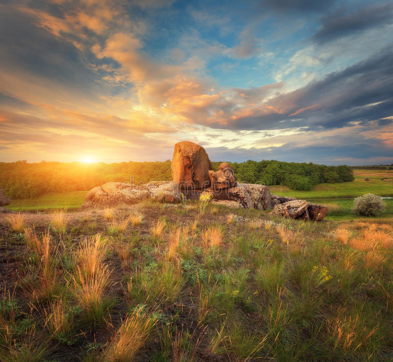 Summer landscape in the beautiful steppe at sunset stock image