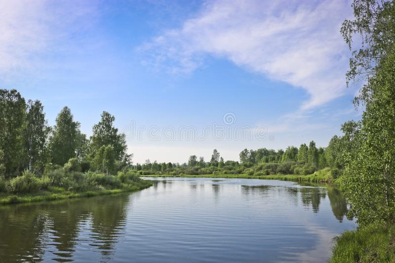 Summer landscape - calm flat river flows among forests.  royalty free stock photography