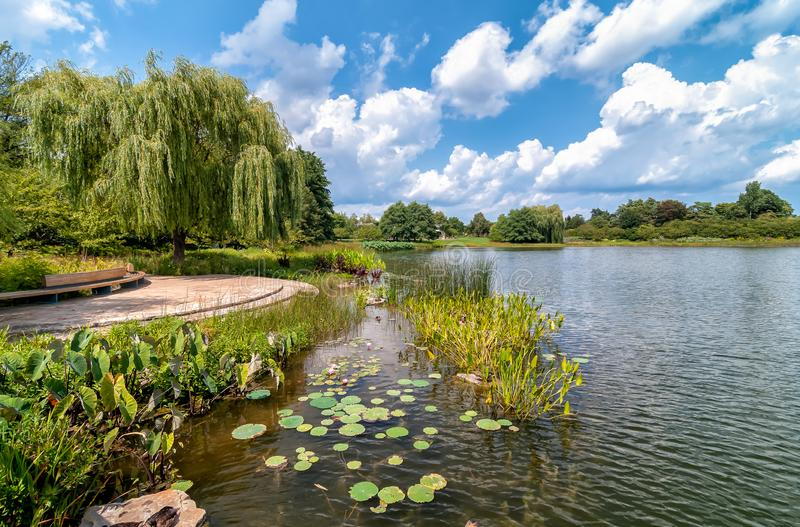 Summer landscape of Chicago Botanic Garden, Glencoe,USA stock image
