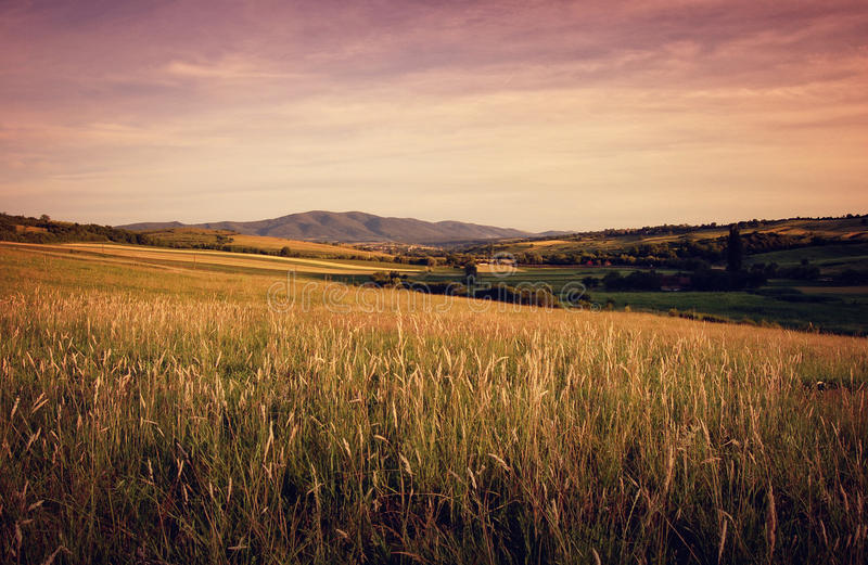 Summer landscape at evening with mountain hills an. D grass and a red light royalty free stock image
