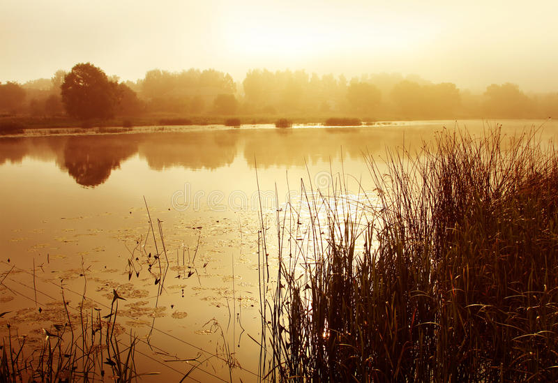 Summer landscape, fog on river stock photography