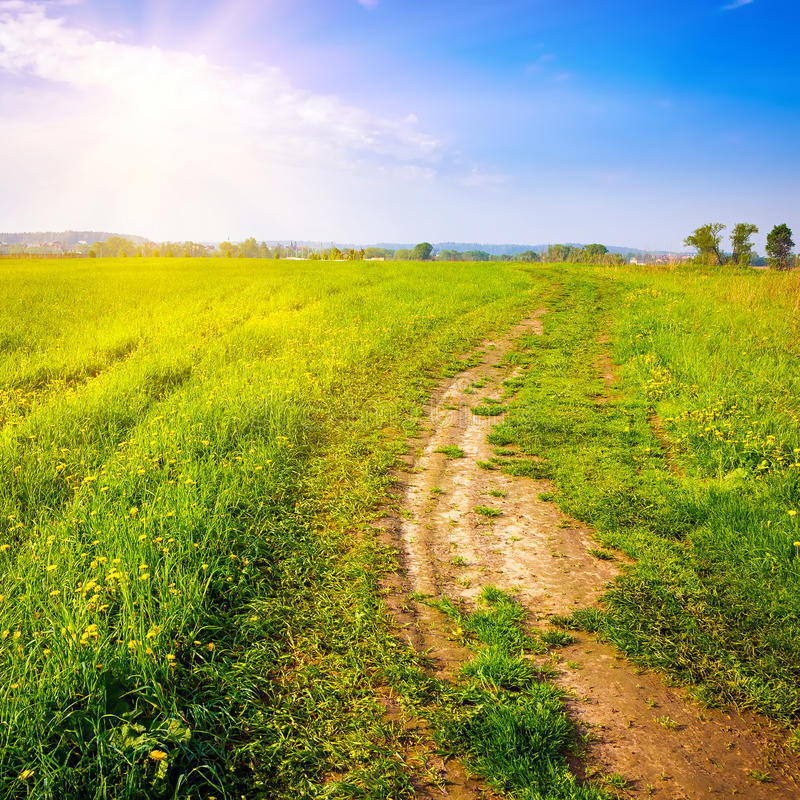 Download Summer landscape stock photo. Image of european, outdoors - 38788620