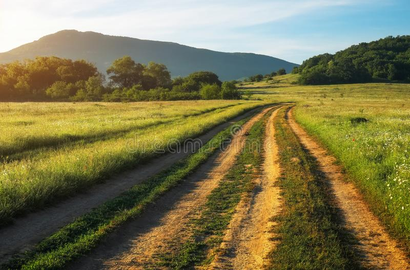 Summer landscape with green grass, road and trees royalty free stock photo