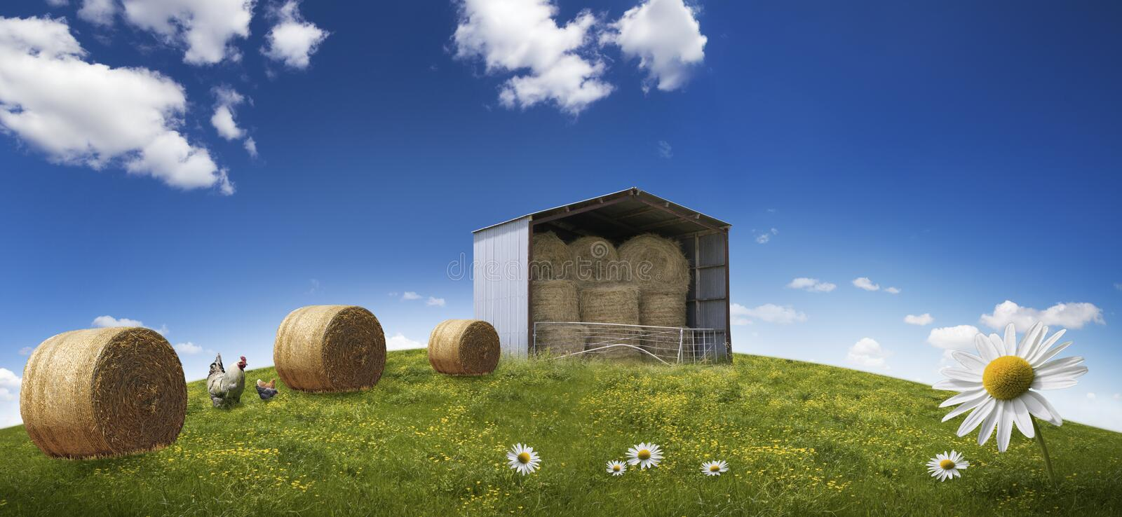 Summer landscape with hey stacks stock images