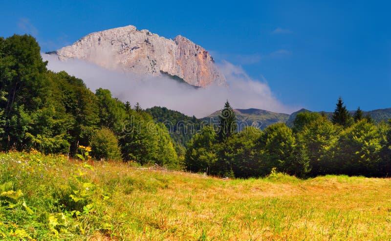 Download Summer Landscape With Huge Rock Stock Image - Image: 23943851