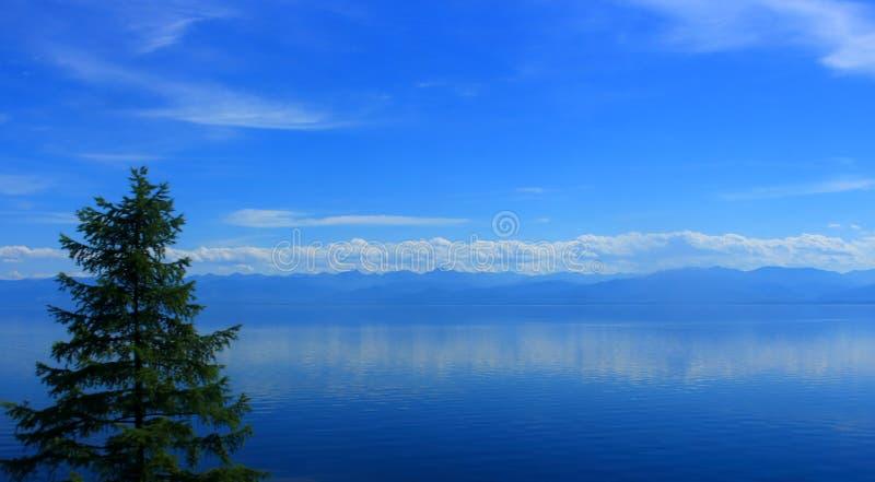 Summer landscape of Lake Baikal stock images