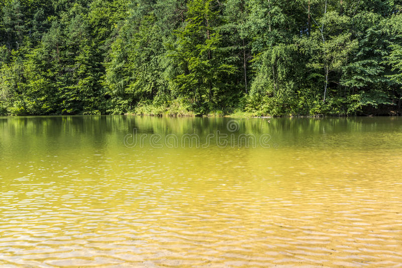 Summer Landscape At The Lake And Forest With Mirror Reflection Stock Photo