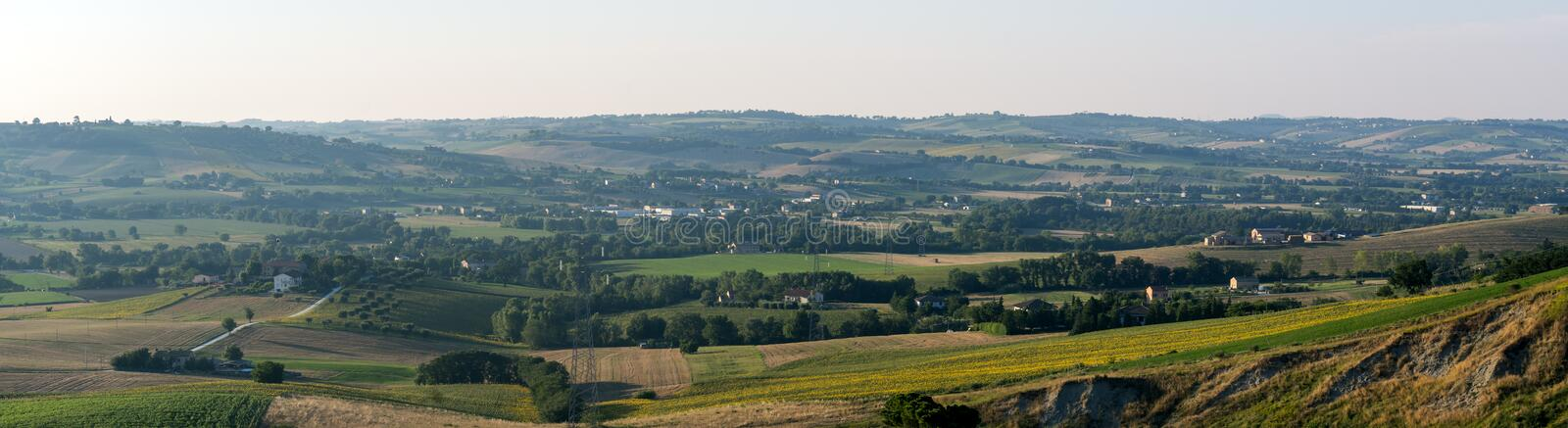 Summer landscape in Marches (Italy). Landscape near Macerata (Marches, Italy) at summer: late afternoon royalty free stock photos