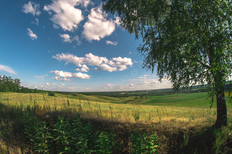 Summer landscape in nature on a sunny afternoon at a fisheye. royalty free stock photography