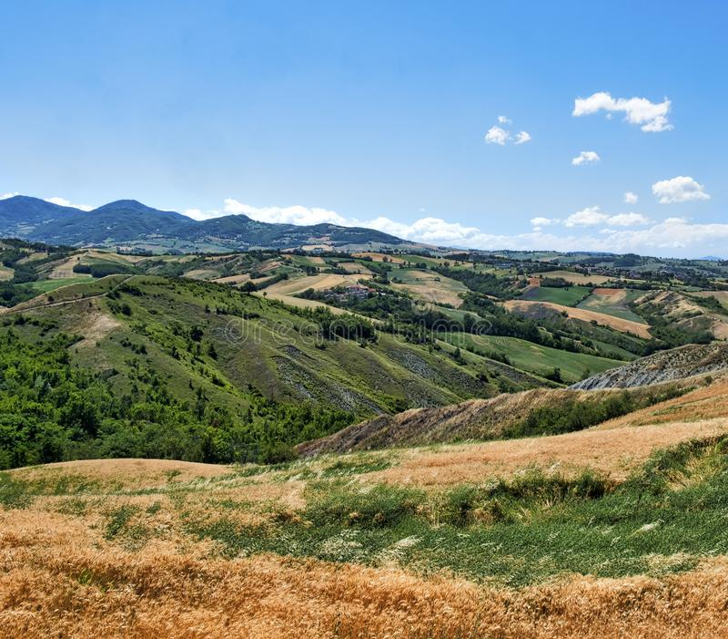 Rivalta di Lesignano Parma, Italy: summer landscape stock image