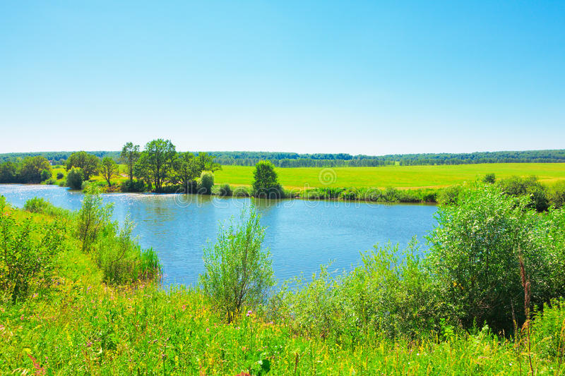 Download Summer landscape with pond stock image. Image of lake - 25703025