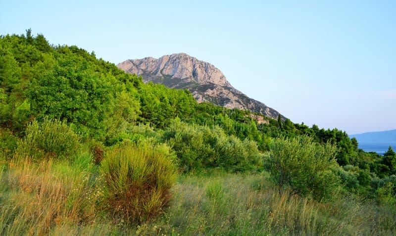 Summer landscape in the Rilic mountain above village Gradac. Croatia. royalty free stock photos