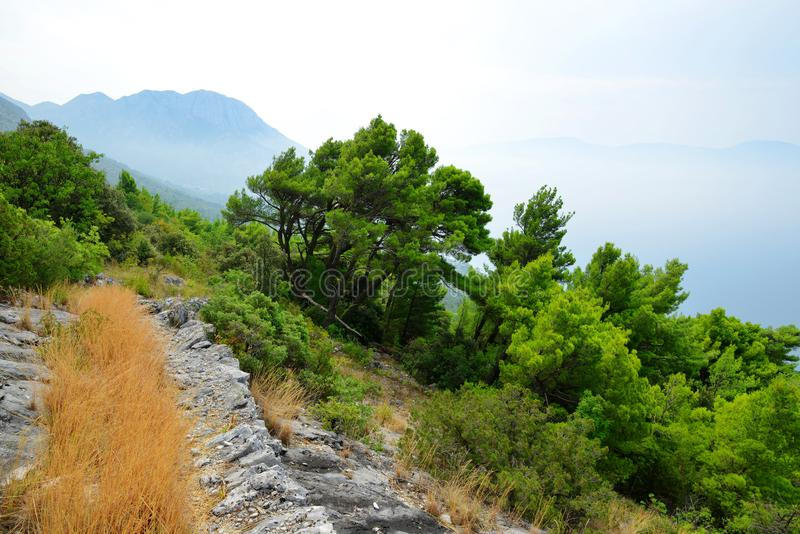 Summer landscape in the Rilic mountain. Croatia. stock photo