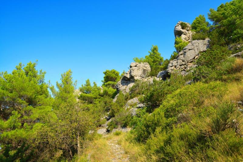 Summer landscape in the Rilic mountain. Croatia. stock images