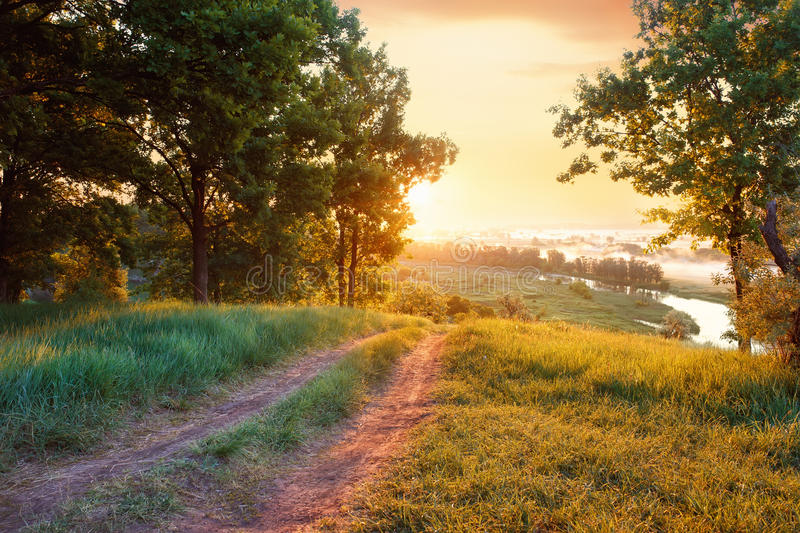 Summer landscape road river forest royalty free stock photography
