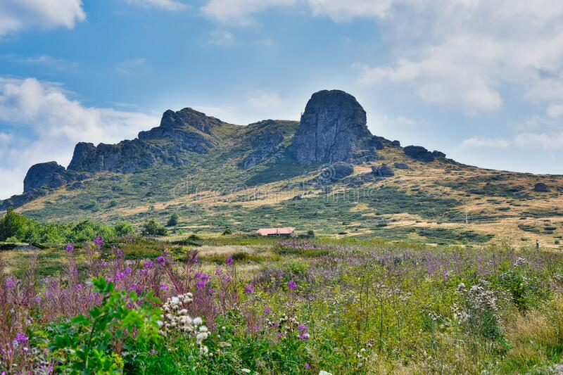 Summer landscape in Serbia royalty free stock image