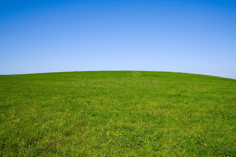 Summer landscape with sky and field stock photography