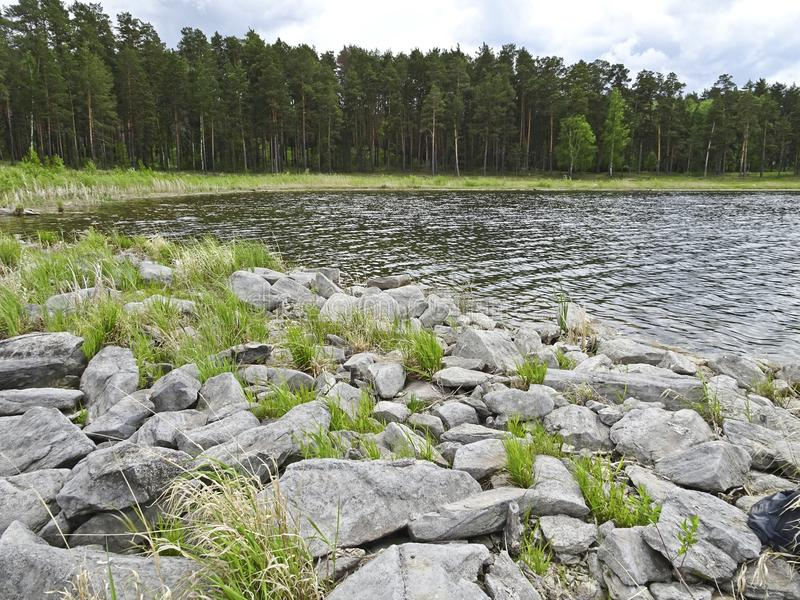 Summer landscape: stony shore of a forest lake in cloudy weather. There are many large stones on the shore royalty free stock image