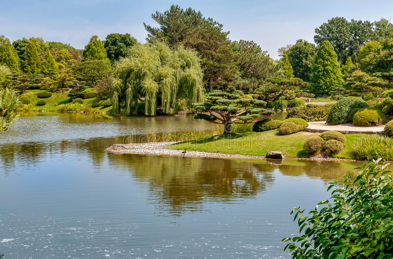 Summer Landscape on sunny day of Japanese Island in Chicago Botanic Garden. royalty free stock image