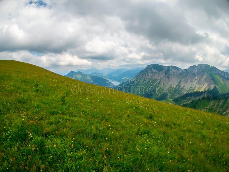 Summer landscape of Switzerland nature at Rochers-de-Naye. Summer landscape of Switzerland mountain nature at Rochers-de-Naye royalty free stock image