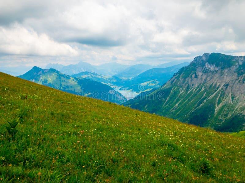 Summer landscape of Switzerland nature at Rochers-de-Naye. Summer landscape of Switzerland mountain nature at Rochers-de-Naye stock photography