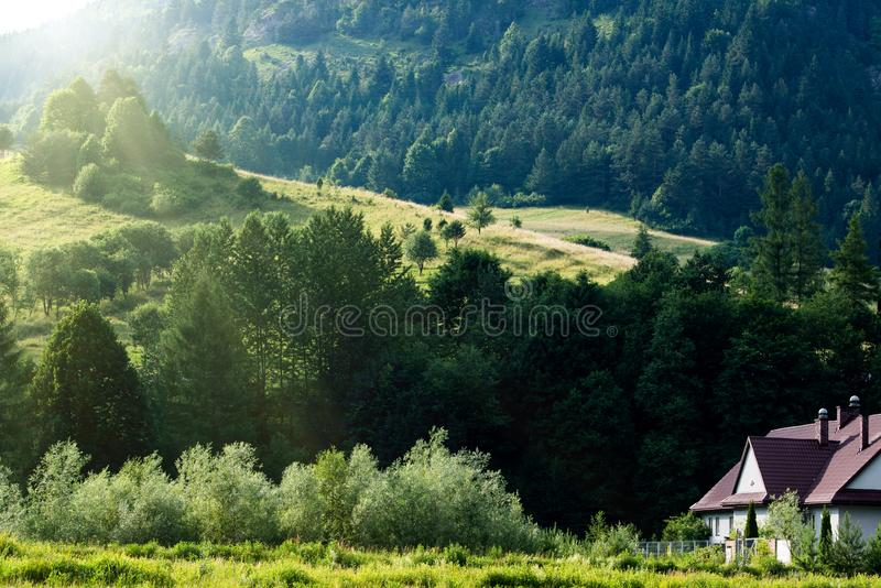 Summer landscape of Tatra mountains at sunny day stock image