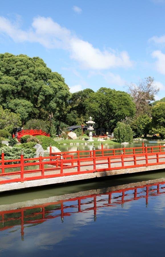Summer Japanese garden. Landscape . stock photo
