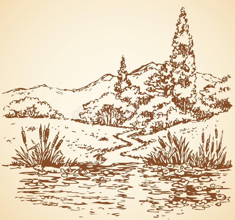 Summer landscape: trail from forest to stream. Vector sketch stock illustration
