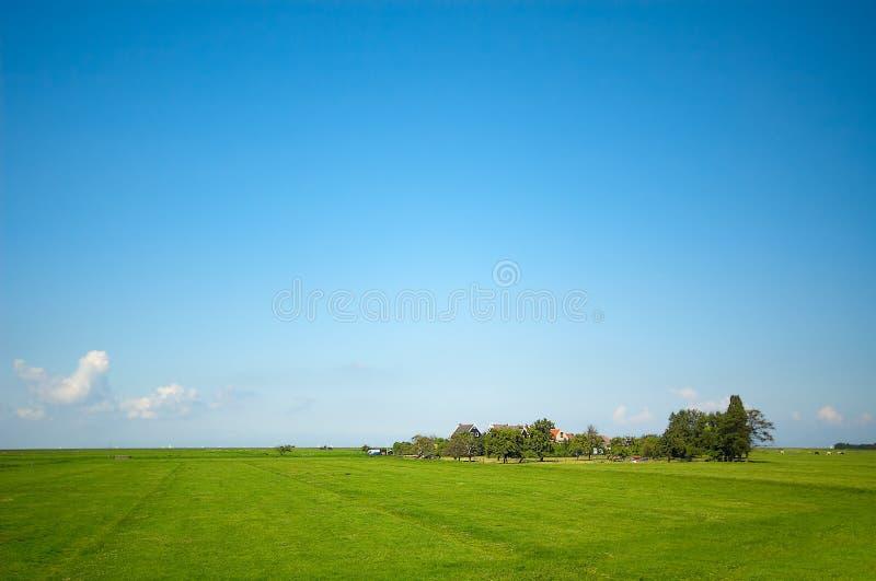 Summer landscdape royalty free stock images