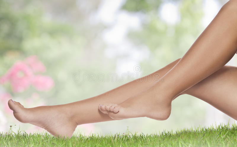 Summer legs royalty free stock photo