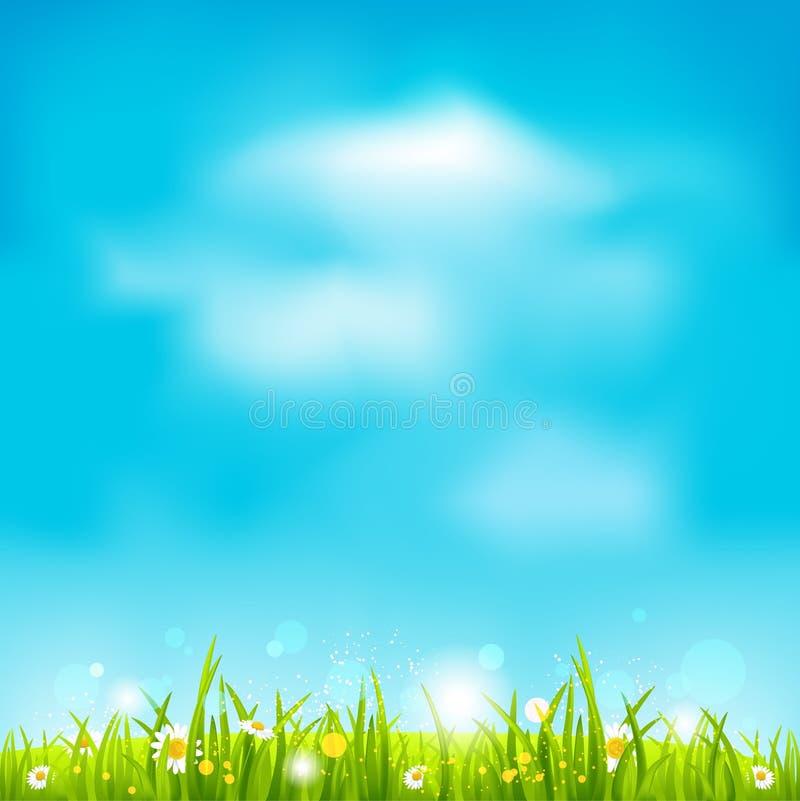 Summer light background stock illustration