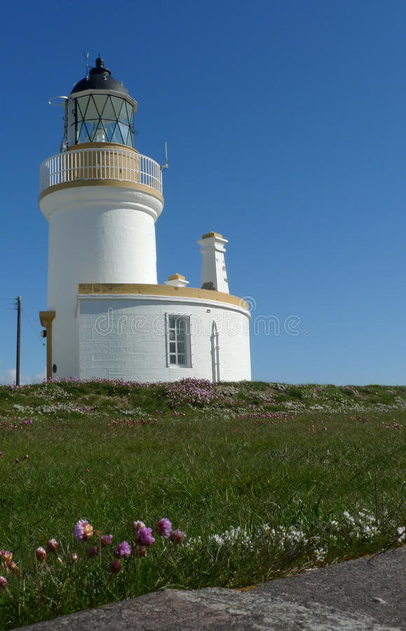 Summer lighthouse with sea pinks in foreground stock photo