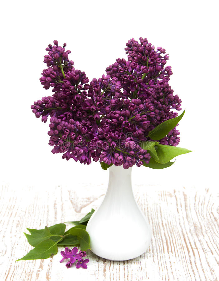 Summer lilac flowers in vase stock photo