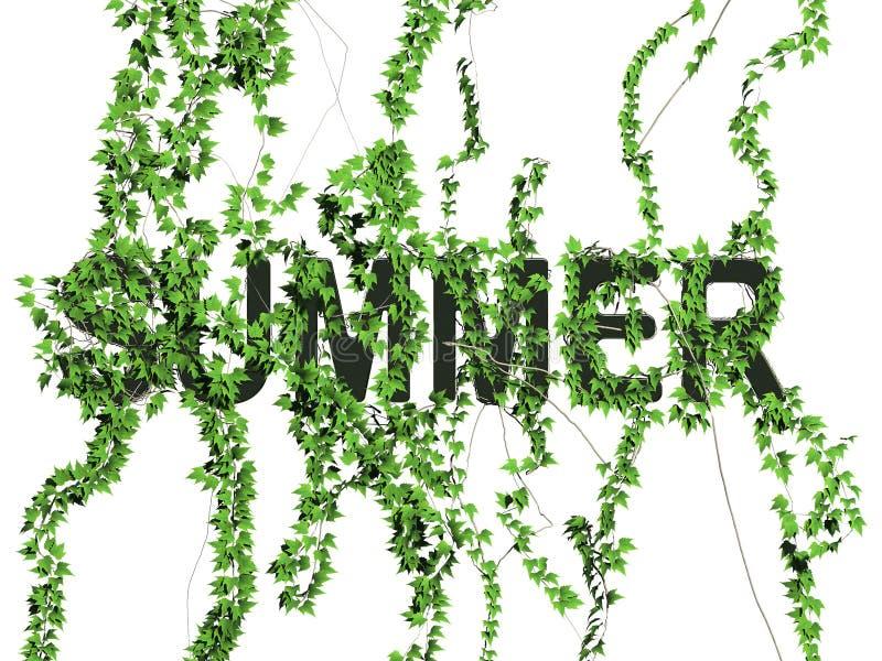 Download Summer logo stock illustration. Illustration of logo, plant - 5487863