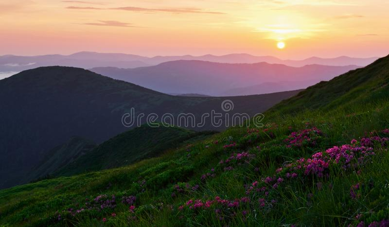 In the summer. Majestic Carpathian mountains. Beautiful landscape. Breathtaking view stock photos