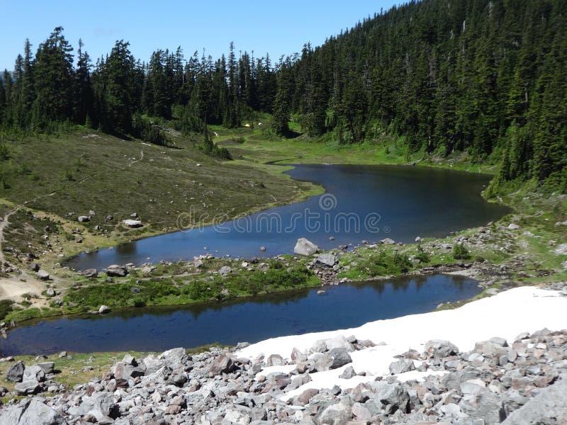Summer at Mazama Lake. In the Mount Baker wilderness royalty free stock photos