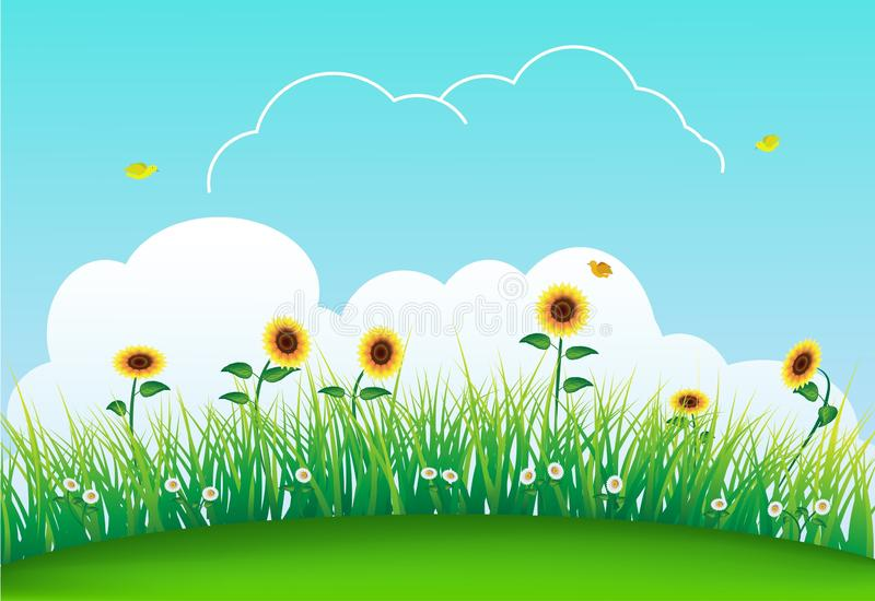 Summer meadow with green grass, sunflowers, sky and daisy flower. Summer meadow with green grass, sunflowers, sky, bird and daisy flower vector illustration