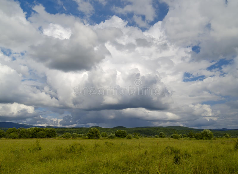 Summer meadows under the cloudy sky royalty free stock photography