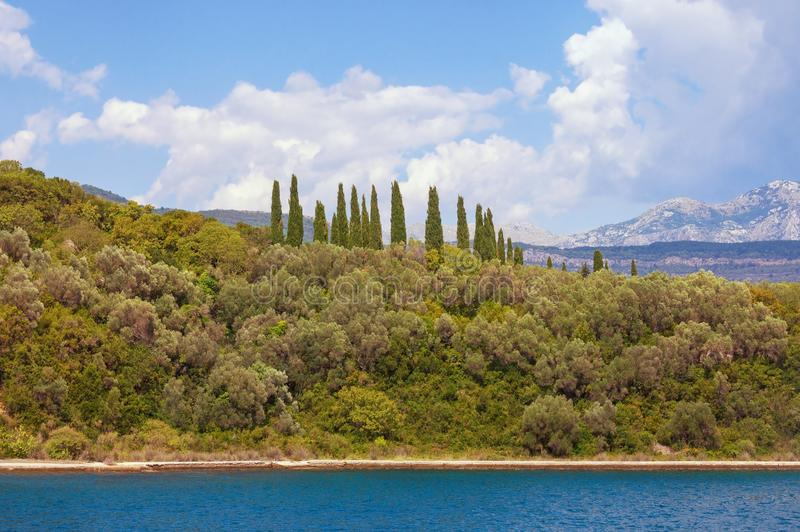 Summer Mediterranean landscape with silhouettes of green trees against sky. Montenegro royalty free stock photo