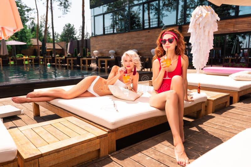 Positive joyful women drinking their tasty cocktails stock photography