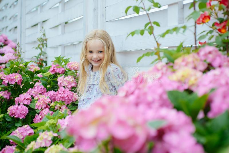 Summer. Mothers or womens day. Little girl at blooming flower. Childrens day. Small baby girl. Spring flowers. Childhood royalty free stock photos