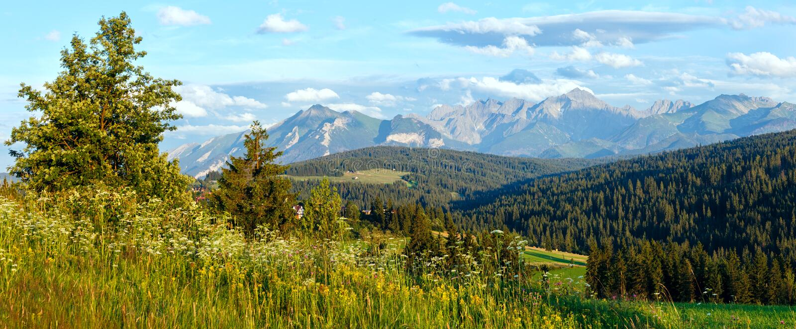 Download Summer Mountain Evening Country Panorama Stock Photo - Image: 31430178