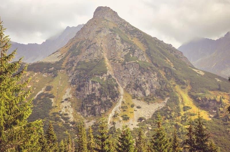 Summer mountain landscape. Beautiful mountain peaks in High Tatra, Slovakia stock photography