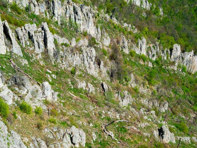 Download Summer Mountain Landscape In Crimea Stock Images - Image: 36777554
